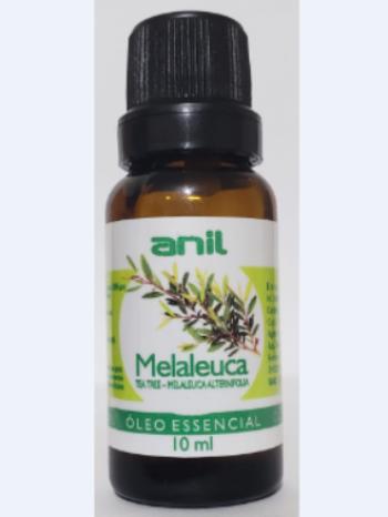 Melaleuca (Copy)